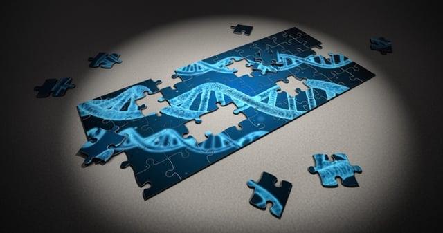 puzzle-2500333_1920-1.jpg